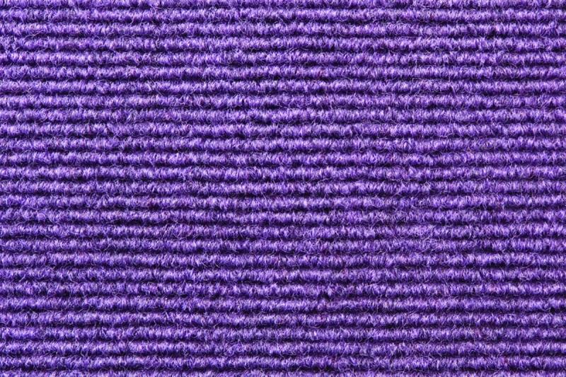 Broadrib - Violet